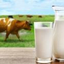 鈣/牛初乳/羊奶片